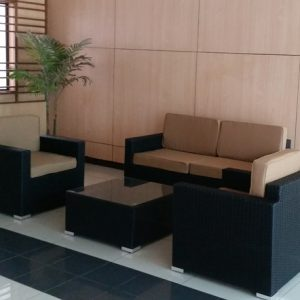 Garden Wicker Sofa Set SS S113