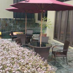 Outdoor Pool Deck Dining Set Ds 0273 Zebano