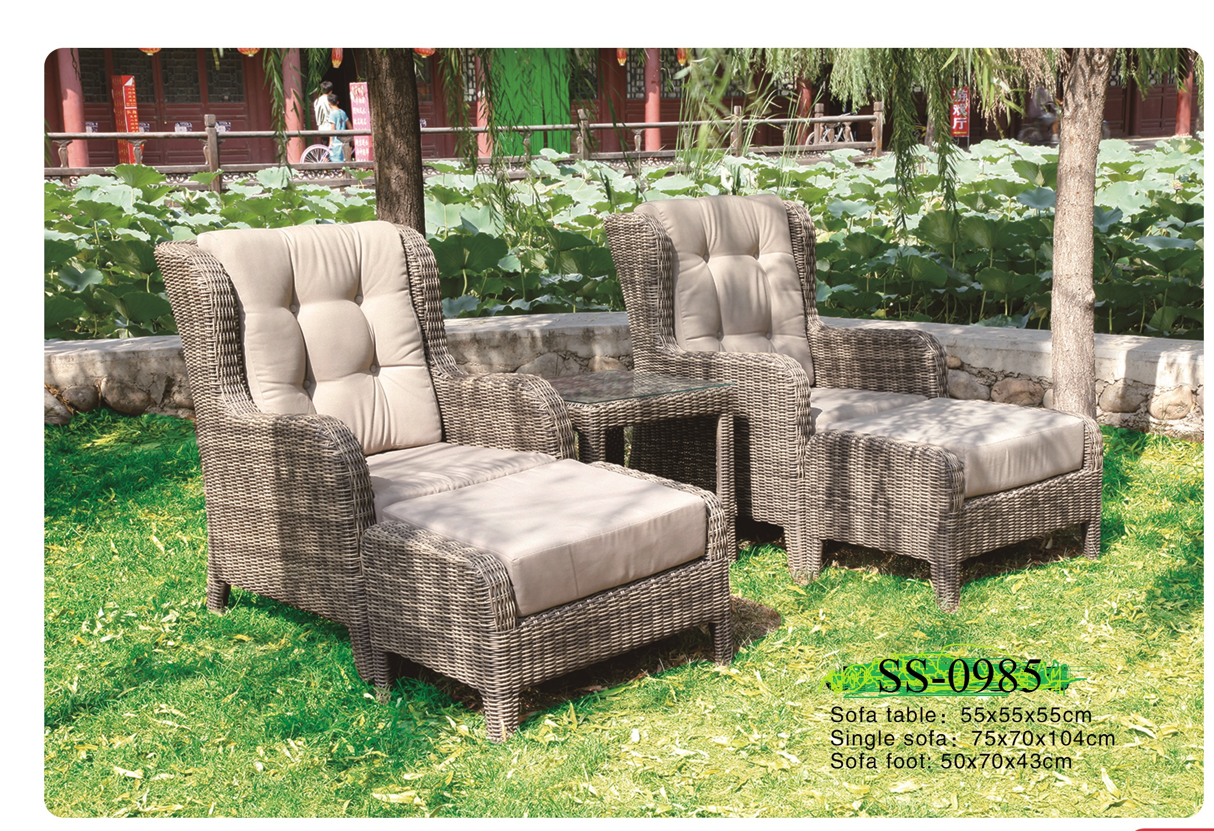 Lounge Deck Chair With Foot Stool SS-0985