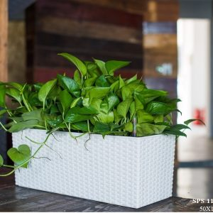Planter Box Polypropylene (2)