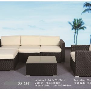 Mini L Shape Outdoor Sofa SS-2541