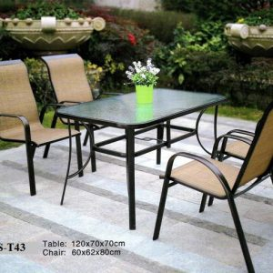 Outdoor Back Yard Dining Chair DS-T43